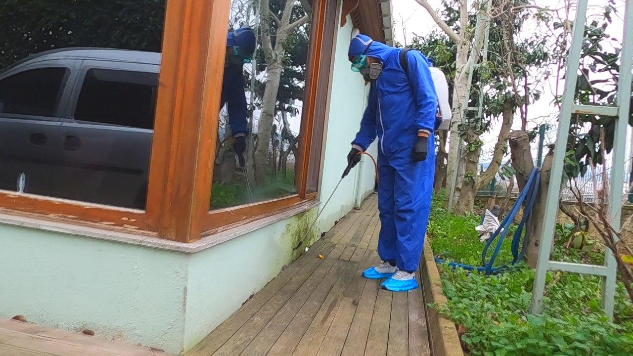 Böcek İlaçlama Firması Arayışlarınızda World Böcek İlaçlama Farkını Yaşayın!